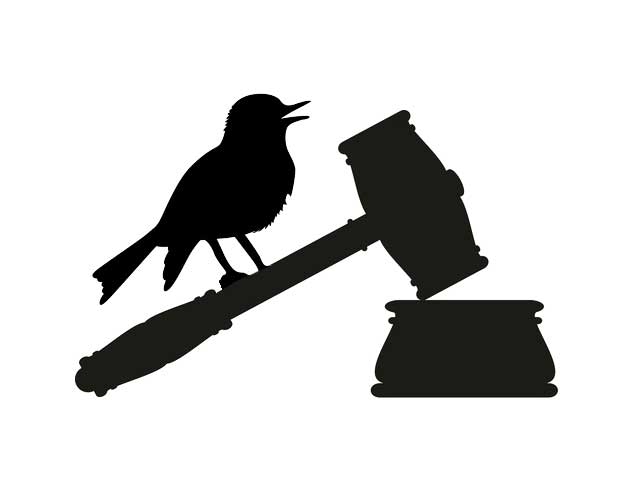 twitter-bird-perched-on-gavel-o