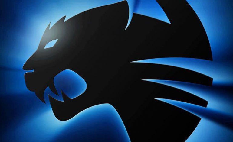 AMD, Team ROCCAT ile eSpor arenasına geri dönüyor