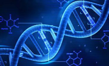 Bilim insanları, DNA için GPS üzerinde çalışıyorlar