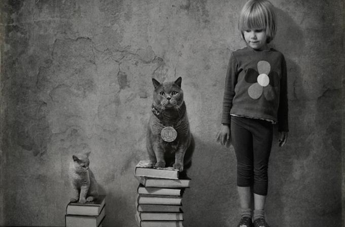 Galeri: Bu küçük kız ve kedileri internetin yeni neşesi oldu