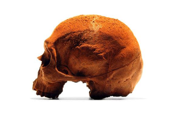 İnsan kafatası şeklinde çikolata