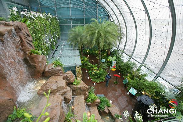 Changi bahçesi ve şelalesi