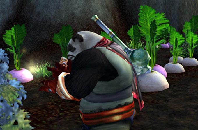 Pandaren bölgesinden çıkmadan Level 90 oldu!