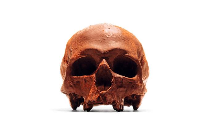 Galeri: Çikolatadan gerçek boyutta insan kafatası yaptılar