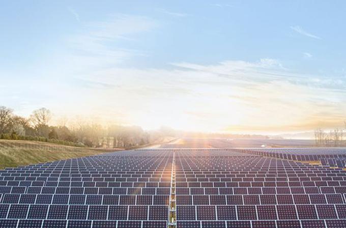 Apple'dan güneş enerjisi tarlaları