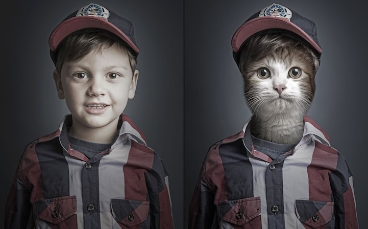Sahibi Gibi Giyinen Kediler