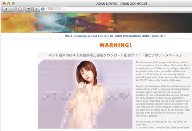 ESET, son olarak popüler Japon porno web siteleri ziyaretçilerinin banka hesap bilgilerini çalan zararlı bir yazılım tespit etti