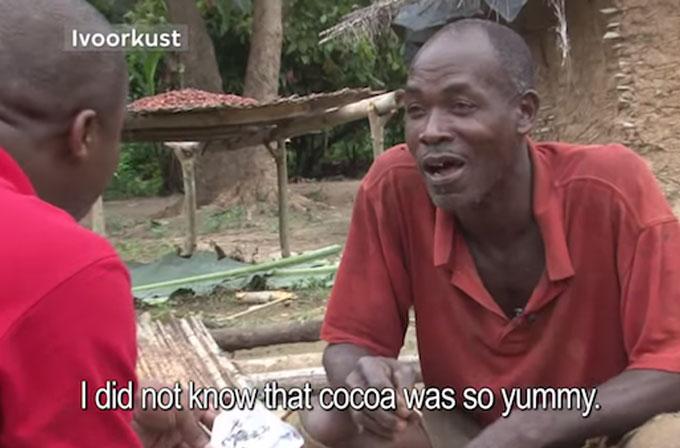 Hayatlarında ilk kez çikolata yiyen kakao işçileri (VİDEO)