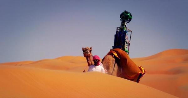 Liwa Çölünü ayağınıza getiren deve