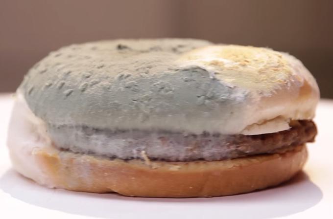 Video: 30 gün boyunca bozulmayan tek cheeseburger!