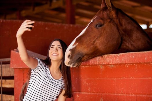 horse-selfie-1000x667