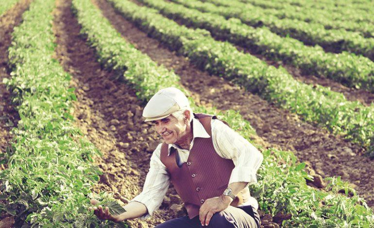 Turkcell'li çiftçilere 30 dakika konuşma hediye