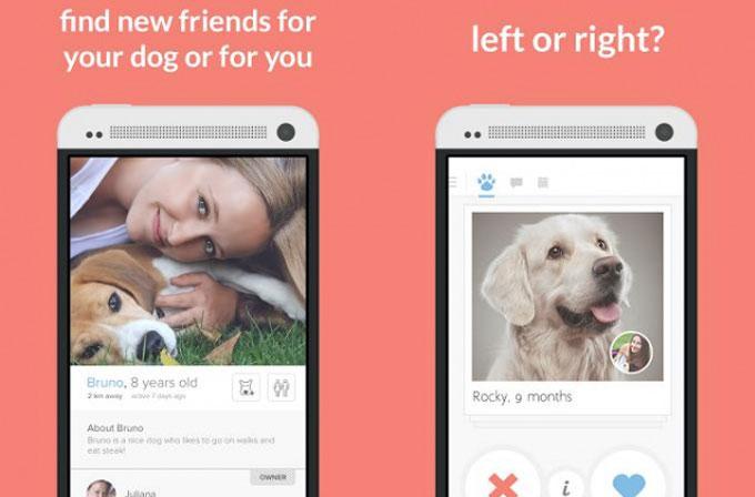 Köpekler için Tinder: Tindog
