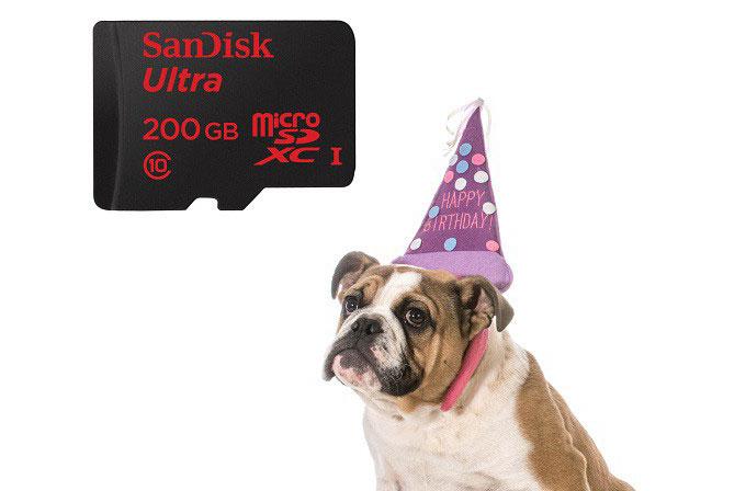 SanDisk, 2 milyar microSD kart satışını kutluyor