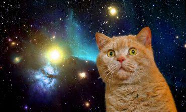 Güneş sistemimize dokuzuncu gezegen eklendi!