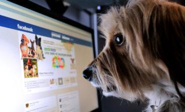 Facebook Yanlış Haberler için Bildirim Sistemi Getiriyor