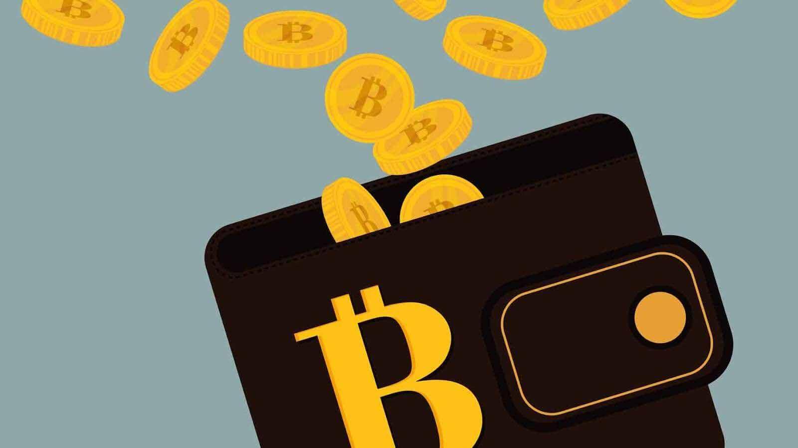 bircoin, monero, waves, ethereum, ether, btc, wallet, cüzdan, bitcoin cüzdanı,