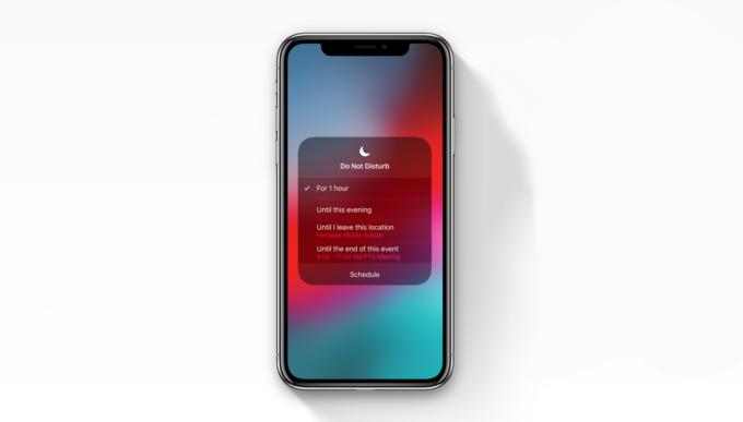 iOS 12 Rahatsız Etme