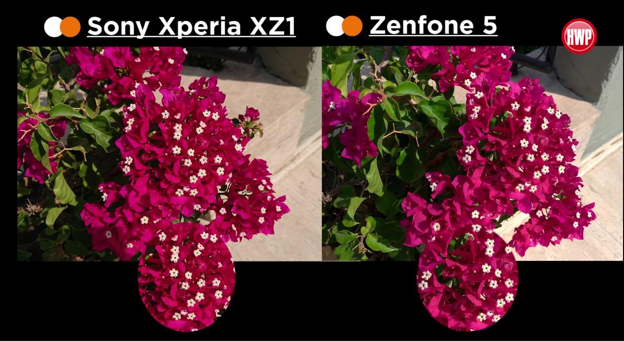ASUS Zenfone 5 vs Xperia XZ1 kamera karşılaştırması