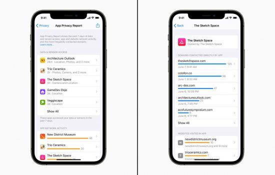 Apple Gizlilik Raporu